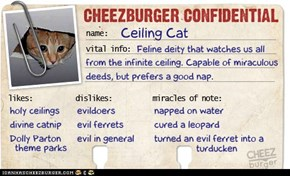 Cheezburger Confidential Presents: Ceiling Cat