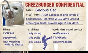 Cheezburger Confidential Presents: Serious Cat