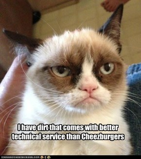 I have dirt that comes with better technical service than Cheezburgers