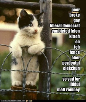 poor broke gay liberal democrat conbicted felon kitteh on teh fence ober pezdental elekchun  so sad for liddul matt romney