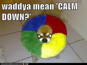 waddya mean 'CALM DOWN?'