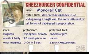 Cheezburger Confidential Presents: Monorail Cat