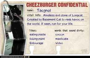 Cheezburger Confidential Presents: Tacgnol
