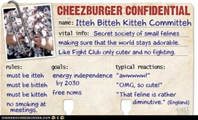Cheezburger Confidential Presents: Itteh Bitteh Kitteh Committeh