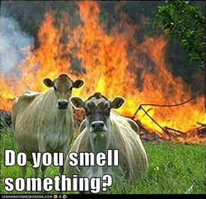 Do you smell something?