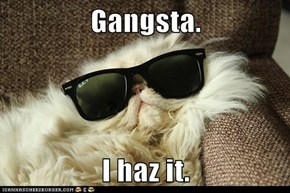 Gangsta.  I haz it.