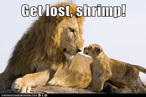 Get lost, shrimp!