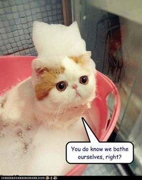 You do know we bathe ourselves, right?