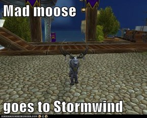 Mad moose  goes to Stormwind