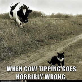 WHEN COW TIPPING GOES HORRIBLY WRONG.