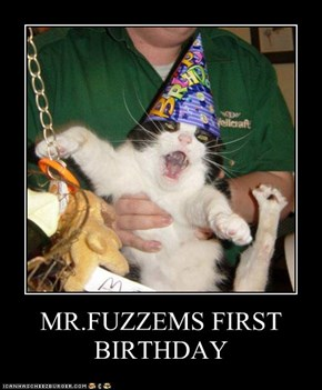MR.FUZZEMS FIRST BIRTHDAY