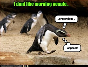 I dont like morning people..