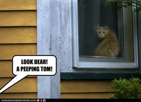 LOOK DEAR! A PEEPING TOM!
