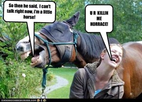 WHEN HORSES DO STAND~UP COMEDY!