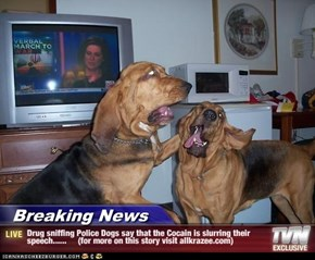 Breaking News - Drug sniffing Police Dogs say that the Cocain is slurring their speech......     (for more on this story visit allkrazee.com)