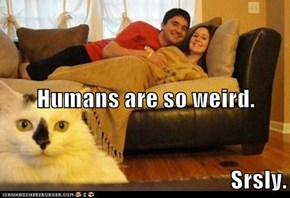 Humans are so weird.  Srsly.