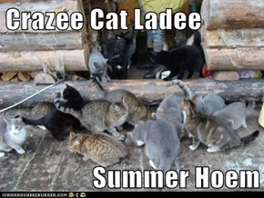 Crazee Cat Ladee  Summer Hoem