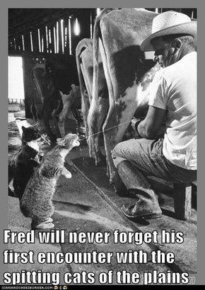 Fred will never forget his first encounter with the spitting cats of the plains