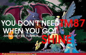 SHINE gets you all the trainers