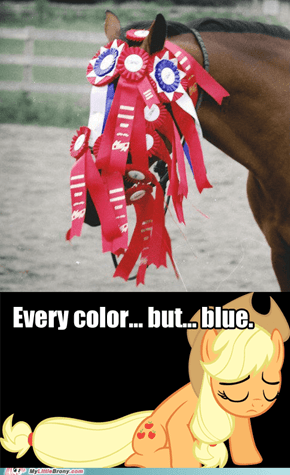 All of those ribbons.. But not one blue.