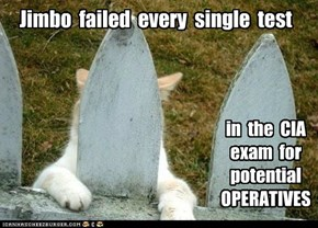 Jimbo  failed  every  single  test