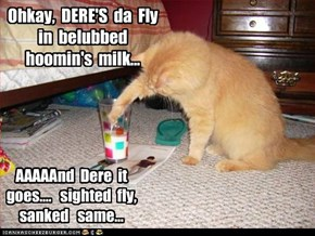 Ohkay,  DERE'S  da  Fly  in  belubbed  hoomin's  milk...  AAAAAnd  Dere  it  goes....   sighted  fly,   sanked   same...