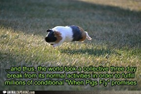 One small leap for a pig, One giant leap to attention for everyone who made a promise