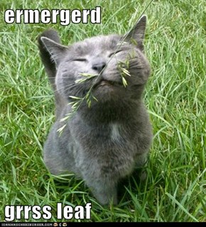 ermergerd  grrss leaf