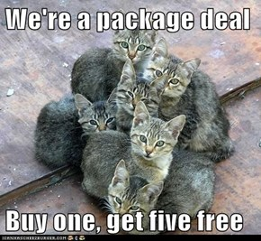 We're a package deal  Buy one, get five free