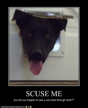 SCUSE ME