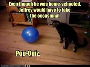 After which, he would spend the occasional recess under the bed.