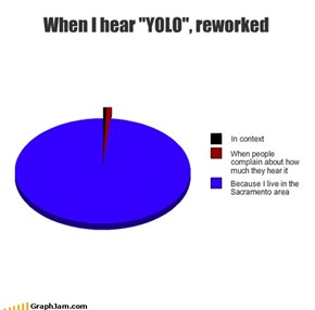 "When I hear ""YOLO"", reworked"