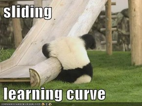 sliding  learning curve