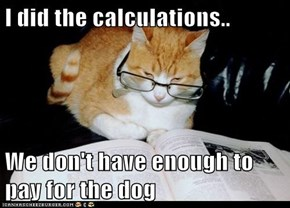 I did the calculations..  We don't have enough to pay for the dog