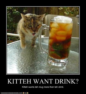 KITTEH WANT DRINK?