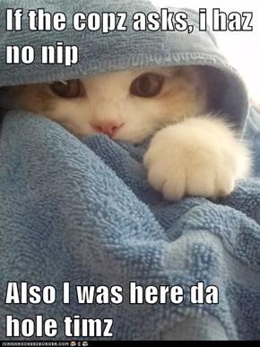 If the copz asks, i haz no nip  Also I was here da hole timz