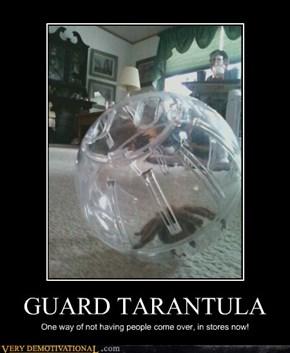 GUARD TARANTULA