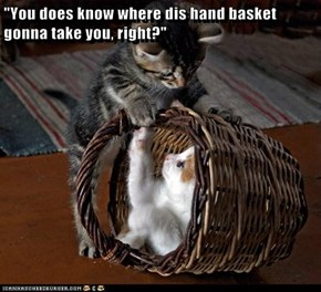"""You does know where dis hand basket gonna take you, right?"""