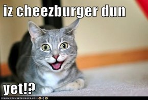 iz cheezburger dun  yet!?