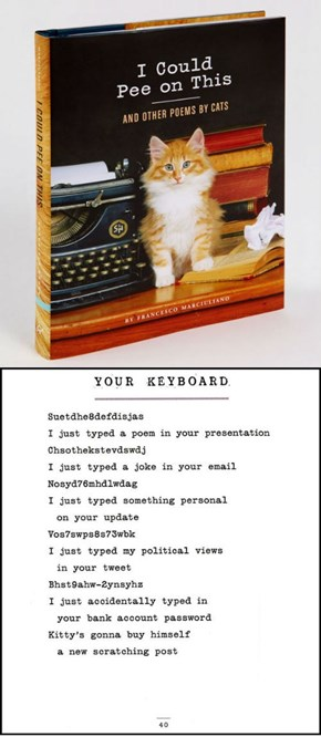 'I Could Pee on This and Other Poems by Cats': A Sampling of Cat Litterature