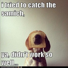 i tried to catch the samich,  ya, didn't work so well...