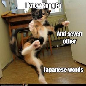 Like samurai, jyu-i, and my favorite: Sushi!