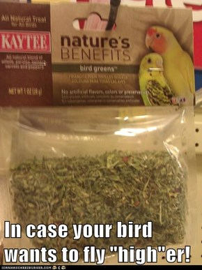 "In case your bird wants to fly ""high""er!"