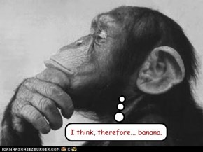 I think, therefore... banana.