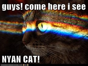 guys! come here i see  NYAN CAT!
