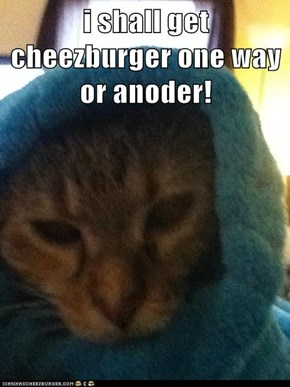 i shall get cheezburger one way or anoder!