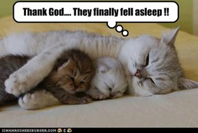 Thank God.... They finally fell asleep !!