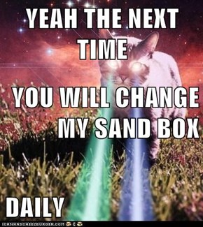 YEAH THE NEXT TIME   YOU WILL CHANGE MY SAND BOX DAILY