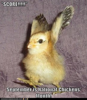 """SCORE!!!!!""  September is National Chickens' Month!"