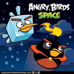 i love angry birds!!